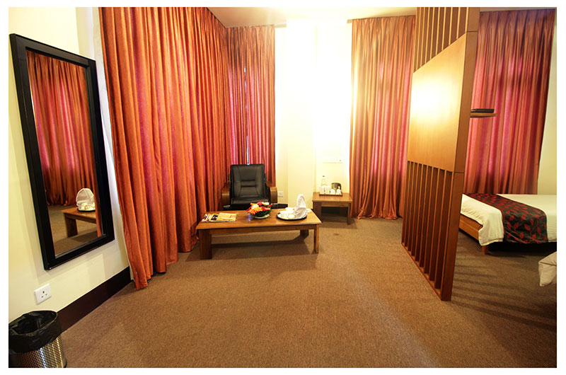 Hotel Green Park-Standard Twin Room1